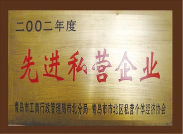 2002年度先进私营企业